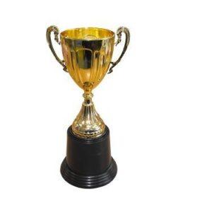 גביע גדול