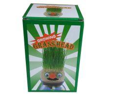 ראש דשא-הפתעות ליום הולדת-במבי הפתעות